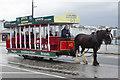 SC3875 : Horse Tram, Douglas by Stephen McKay