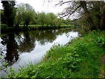 H4772 : Camowen River, Mullaghmore / Campsie by Kenneth  Allen