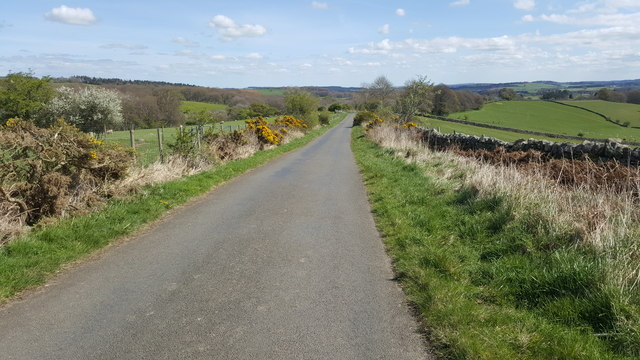 Road between Dalton and High Eshells