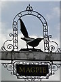 TM1160 : The sign of 'The Magpie' by Adrian S Pye