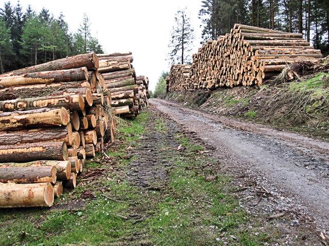 Log Stacks