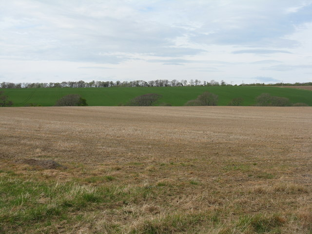 Stubble field at Nether Hailes