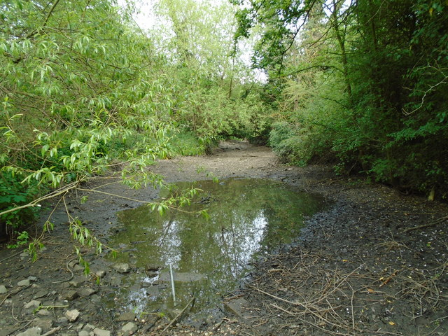 River in drought 9 - looking east from near Broad Colney lake