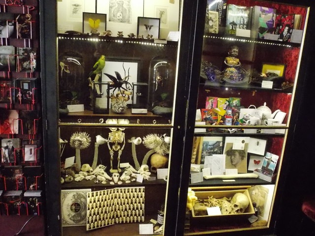 View of the shop display in the Viktor Wynd Museum of Curiosities