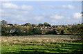 SJ9320 : Radford Meadows near Stafford by Roger  Kidd