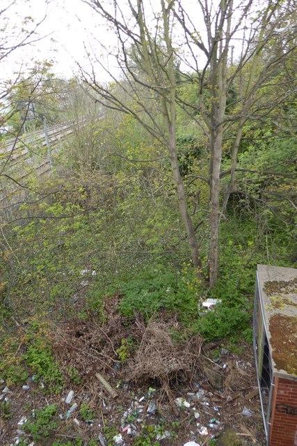 Waste ground beside the railway