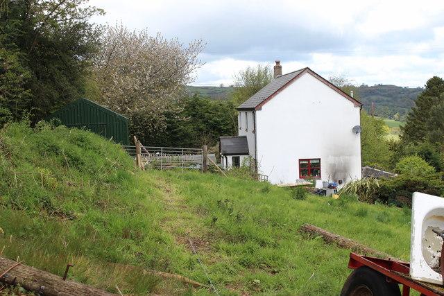 House and hillside meadow, Twyn Wenallt