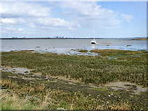 TQ8068 : Saltings, Sharp's Green Bay by Robin Webster