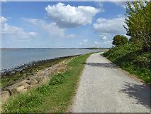 TQ8068 : Saxon Shore Way by Robin Webster