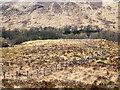 NN1180 : Fence descending  into Gleann Laragain by Trevor Littlewood