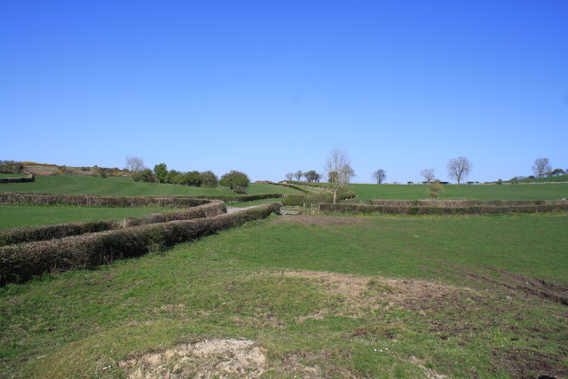 Pasture Land near Hersedd Farm
