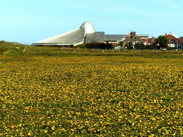A field of Dandelions (taraxacum) with the Crosby Leisure centre on the skyline