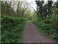 TL3044 : Bridleway from Abington Pigotts by Hugh Venables