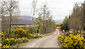 NN0878 : Road on west side of Corpach Hill by Trevor Littlewood