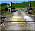 SN8040 : Heart of Wales Line level crossing near Cynghordy railway station, Carmarthenshire by Jaggery