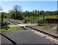 SN8040 : From station platform to level crossing, Cynghordy, Carmarthenshire by Jaggery