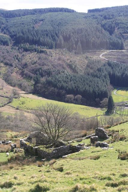 Ruins of Hafod-Offeiriad by Glen Denny