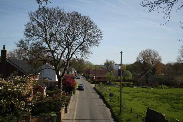 Road towards Buxton Mill and Lamas