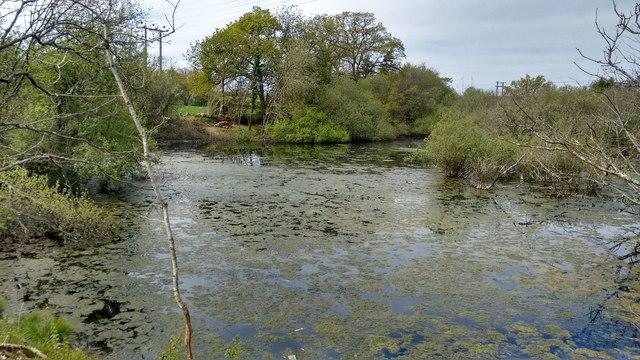Chard Pumping Station settling lagoon
