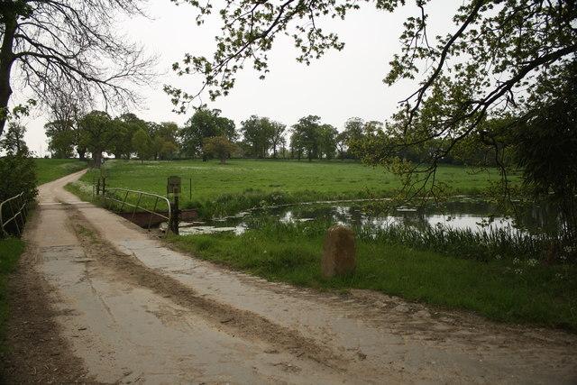 Ditchingham Park