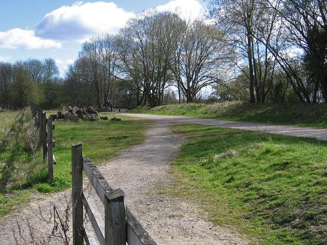 Teversal - Silverhill Trail to NE of Fackley Road bridge