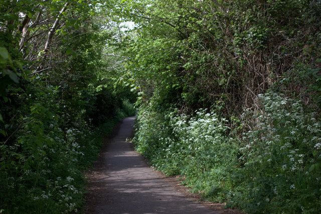 Path from Hall Lane