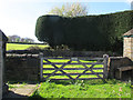 SE2230 : Tong village pinfold by Stephen Craven