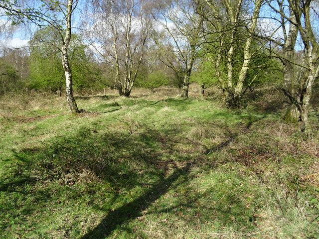 Brocton Camp - Hut base in Hut Lines 'L'