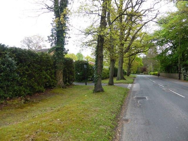 Echo Barn Lane, Wrecclesham