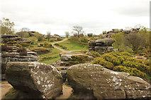 SE2064 : Brimham Rocks by Richard Croft
