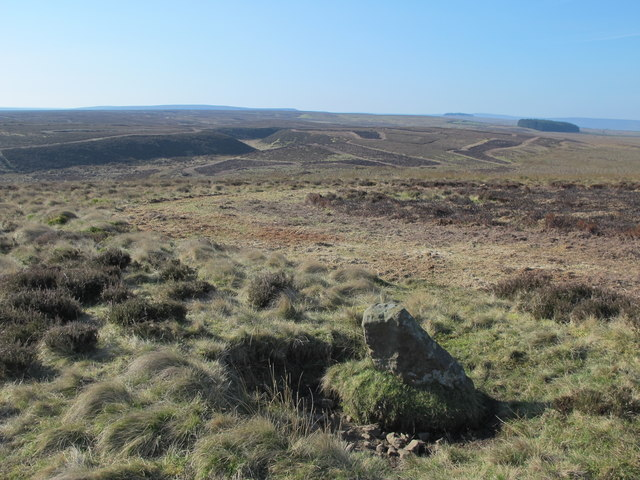Boundary stone and moorland between Great Lawsley and the Foumart Hills