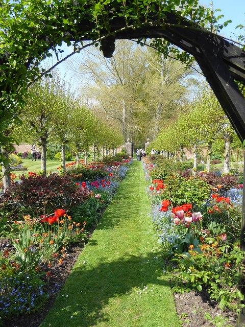 Rymans - Avenue of flowers