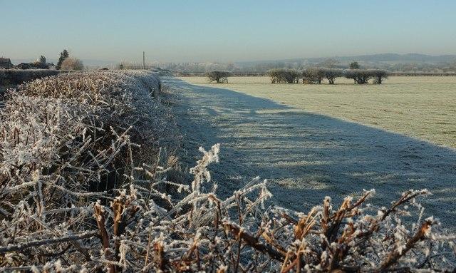Frost, River View Farm