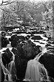 SH7657 : Top of Swallow Falls by John Winder