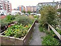 SJ8498 : Northern Quarter Growboxes by Gerald England
