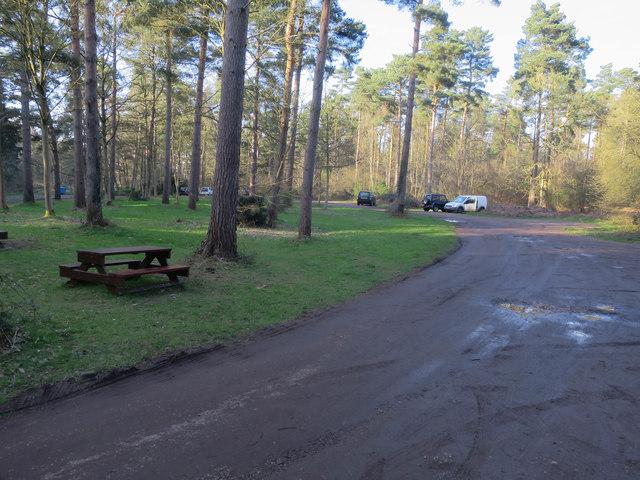 Lynford Arboretum and Lynford Water car park