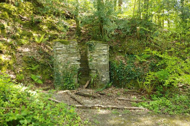 Building remains, Plymbridge Woods