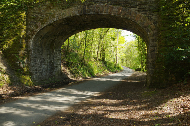 Old railway through Plymbridge Woods
