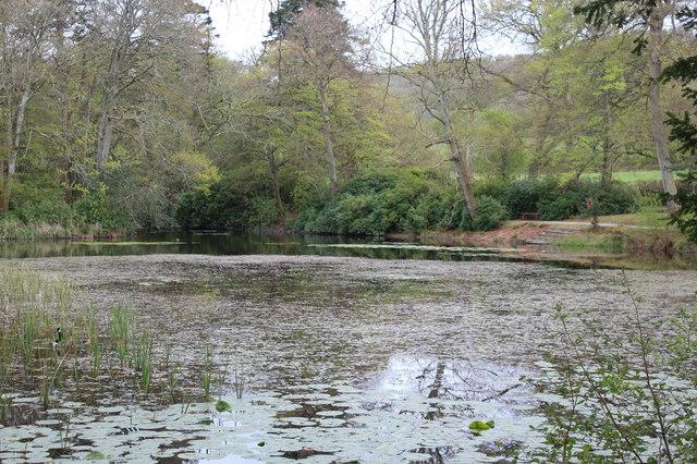 Ornamental lake, Llanerchaeron