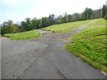 NS3174 : Paths in Birkmyre Park by Thomas Nugent