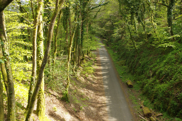 Cycleway above the River Plym