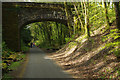 SX5260 : Cycleway through the Plym Valley by Stephen McKay