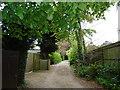 SU8283 : Lane in Hurley by Paul Gillett