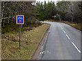 NH9121 : B9153 Docharn Wood by David Dixon