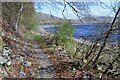 NT2322 : Shore path by St Mary's Loch by Jim Barton