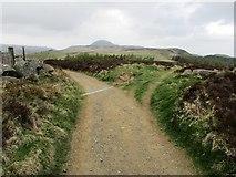 NO2206 : Paths on Lomond hills by Bill Kasman