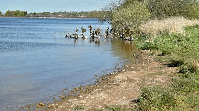 Stoneyford reservoir near Lisburn - May 2017(2)