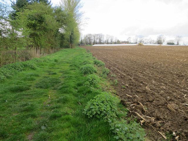 Footpath to Haddenham