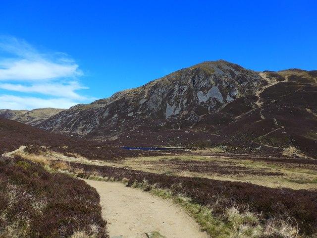 The Ben Vrackie path