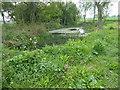 TL5302 : Pond next to a footpath by Marathon